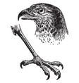eagle claw vintage vector image vector image