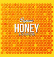 honey bee pattern background vector image
