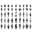 silhouettes different cactus vector image