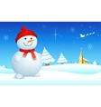 Snowman on Christmas night vector image vector image