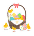 basket with cute chickens vector image
