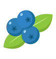 blueberry flat icon fruit and diet vector image vector image