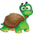 cute tortoise isolated on white vector image vector image