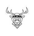 deer with helmet vector image vector image