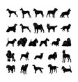 dog silhouette collection set vector image