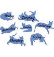 icons in the form of cats which are written days vector image vector image