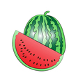 Water melon vector image vector image