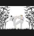 a man demonstrating karate vector image vector image