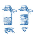 bottles with herbs and oil vector image vector image