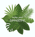 bouquet tropical green vector image vector image