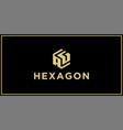 ag hexagon logo vector image vector image