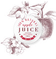 apple juice paper emblem vector image vector image