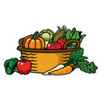 basket full of vegetables vector image
