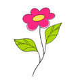 Beautiful pink flower Floral Design Element vector image vector image