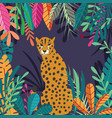 cute exotic wild big cat cheetah sitting on dark vector image vector image