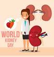 female doctor and cartoon kidney food healthy vector image