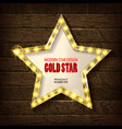 large star with a large number of lights are lit vector image vector image