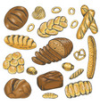 set of colored bakery organic food vector image
