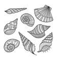 set shells in ethnic tribal boho style vector image vector image