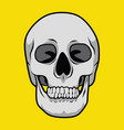 skull is bald for poster or graphic your goods vector image vector image