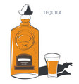 tequila traditional mexican alcoholic drink vector image vector image