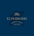 the elderberry confactionary and cafe abstract vector image vector image