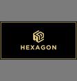 ap hexagon logo vector image vector image
