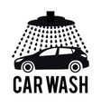 concept for car washing vector image