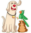 funny pet shop mascots cartoon vector image
