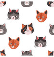 seamless pattern with cute cats faces on white vector image vector image