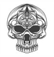 skull head decoration vector image vector image