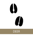 trace of a deer animal vector image