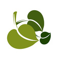 Two simple green deciduous tree leaves stylized vector image vector image