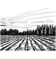 agricultural landscape sketch vector image vector image