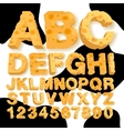 Alphabet and numbers made of cheese vector image vector image