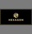 ay hexagon logo vector image vector image