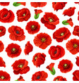 flower of poppy floral seamless pattern background vector image