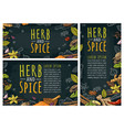 herb and spice handwriting lettering set vector image vector image