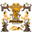 on theme dogs logo dog vector image