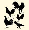 roosters gesture silhouette 10 vector image vector image