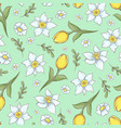 seamless pattern of daffodils tulips hand drawing vector image