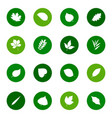 set leaf icons on color backgrounds vector image vector image