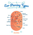 types of ear piercing beauty and fashion diagram vector image