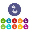 acorn icons set color vector image