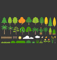 big set of graphic info element of forest vector image vector image