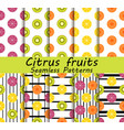 citrus fruits seamless pattern set orange kiwi vector image vector image