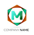 letter m symbol in the colorful hexagonal vector image vector image