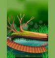 river scene with wooden bridge vector image vector image