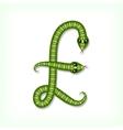 Snake font Pound symbol vector image vector image
