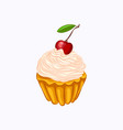 vanilla cupcake with cream and cherry isolated vector image vector image